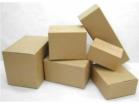 thung-carton-sofa